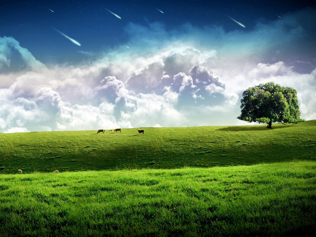 Download Wallpaper 1024x768 Meteor across the sky, green ...