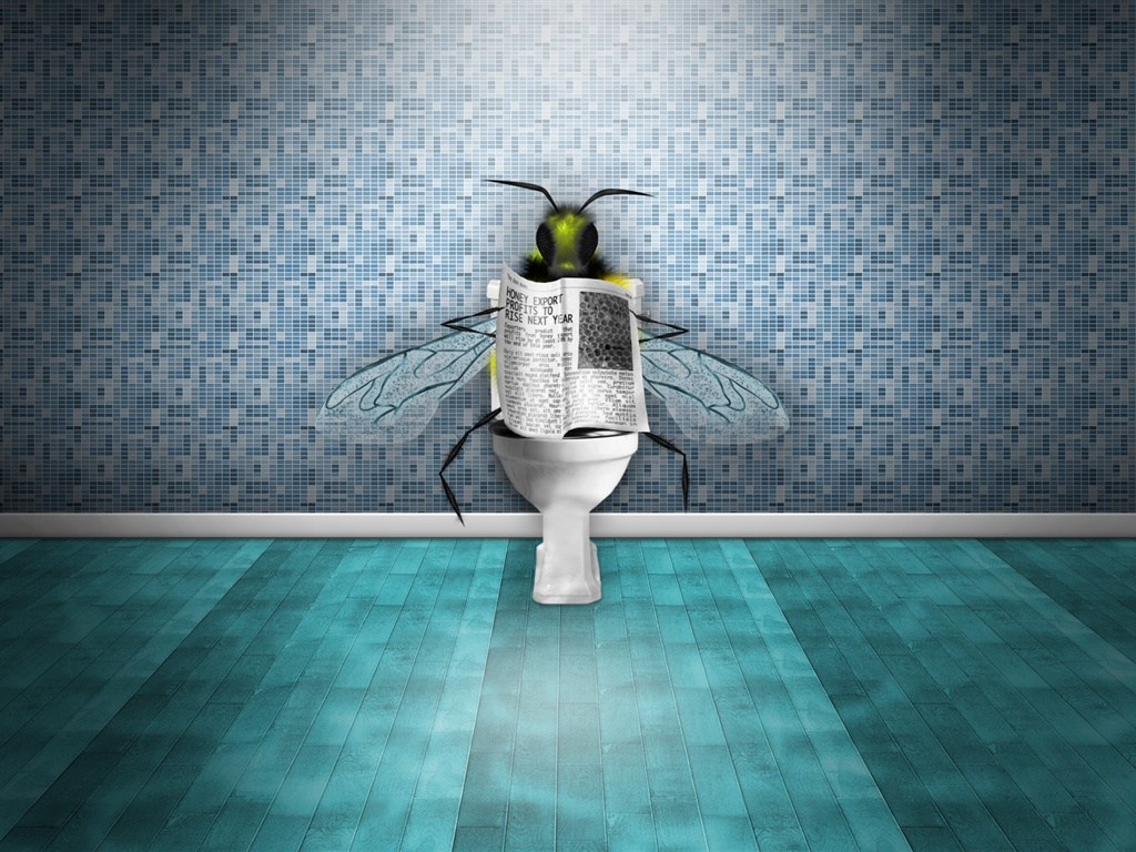 Flies in the toilet reading the newspaper wallpaper - 1024x768