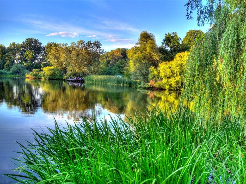 Le vert de la nature, le printemps, la beauté fleuve Fonds d'écran - 1024x768