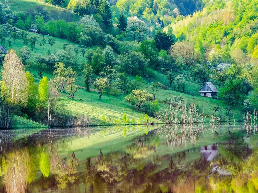 Pente de la montagne, arbres, maison, lac, réflexion de l'eau, paysages de printemps Fonds d'écran - 1024x768