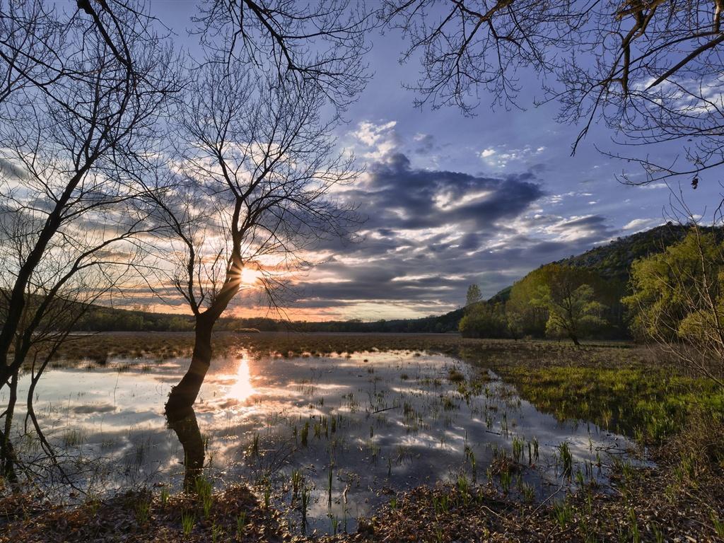 Printemps lever de soleil, les champs, l'eau, les arbres Fonds d'écran - 1024x768