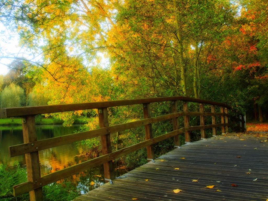 Hdr paysage parc feuilles arbres for 234 t automne pont de bois
