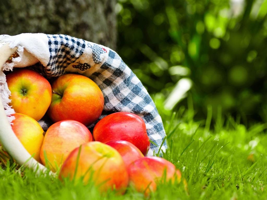 apple fruit background grass - photo #8