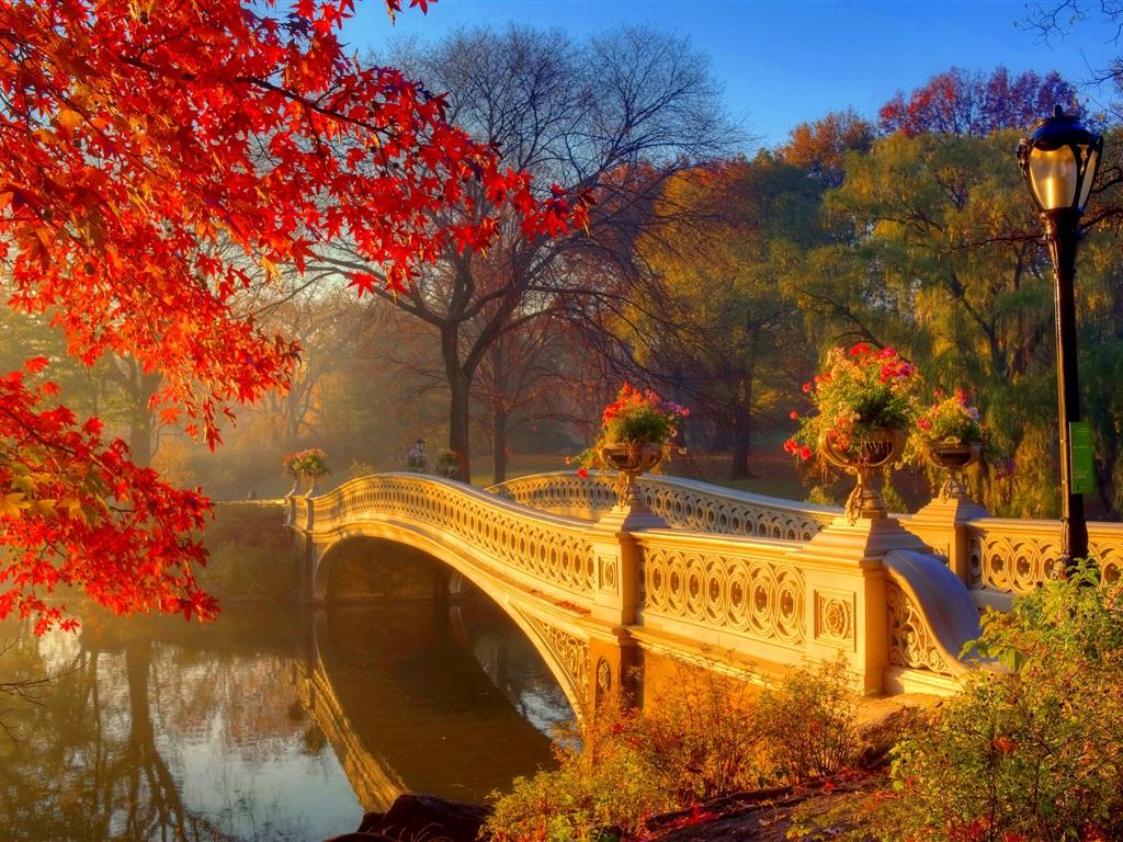 картинки красивые на тему осень в городе обожаю