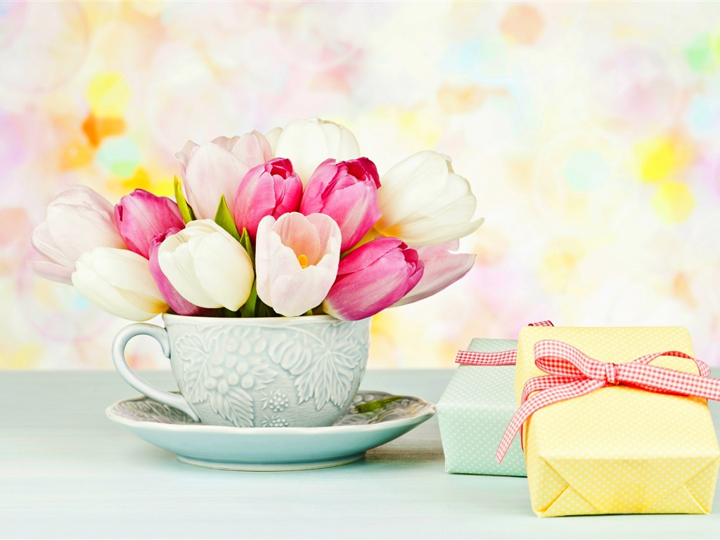wallpaper white and pink tulips  cup  gifts 2560x1600 hd