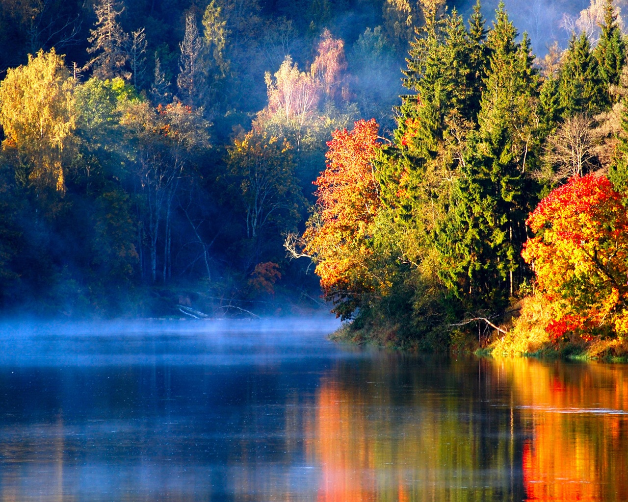 latvian autumn forest river -#main
