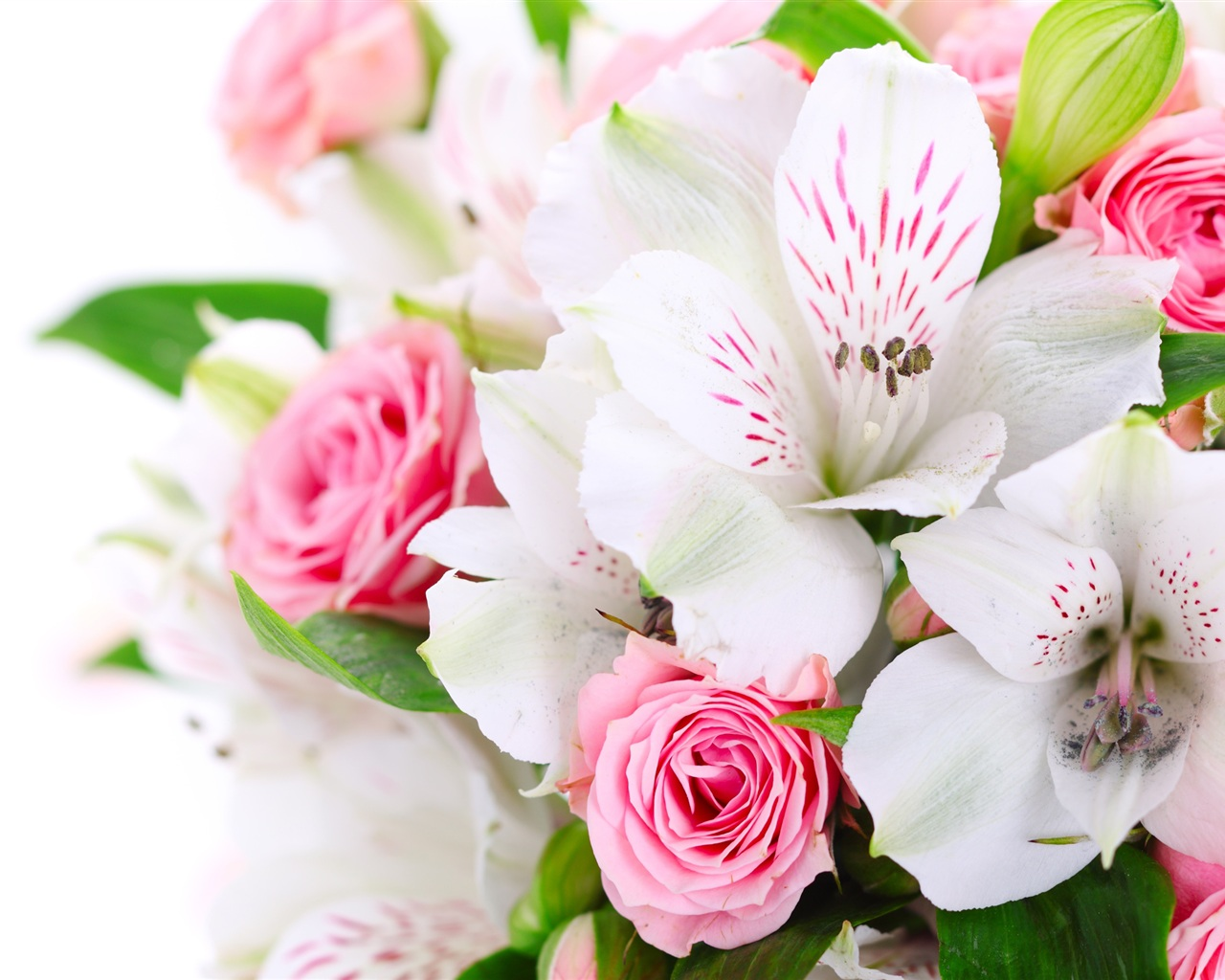 A Bouquet Flowers Pink Roses White Orchids Wallpaper