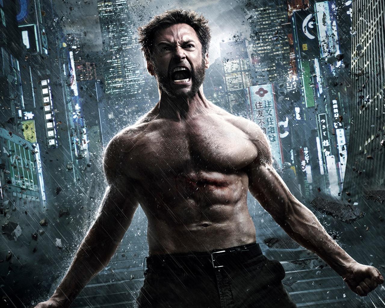 The Wolverine 2013: The Wolverine 2, Movie 2013 Wallpaper