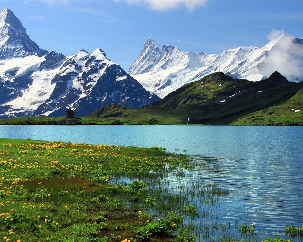 fonds d 39 cran suisse berne nature paysage montagnes enneig es rivi re de l 39 herbe des. Black Bedroom Furniture Sets. Home Design Ideas