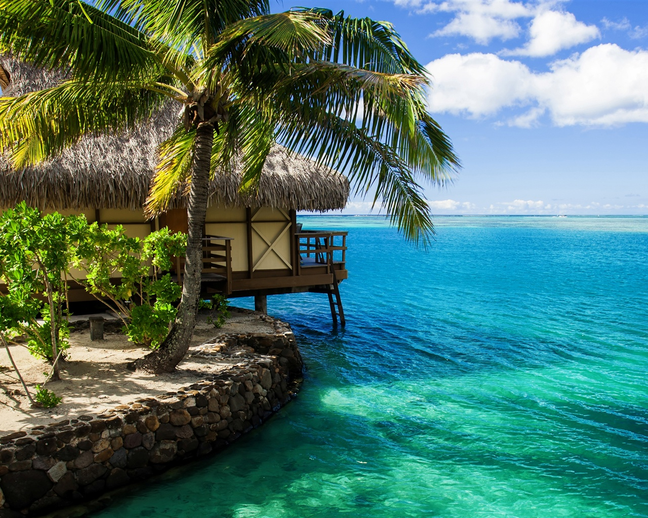 Maldives, Hut, Palm Tree, Sea Water Wallpaper