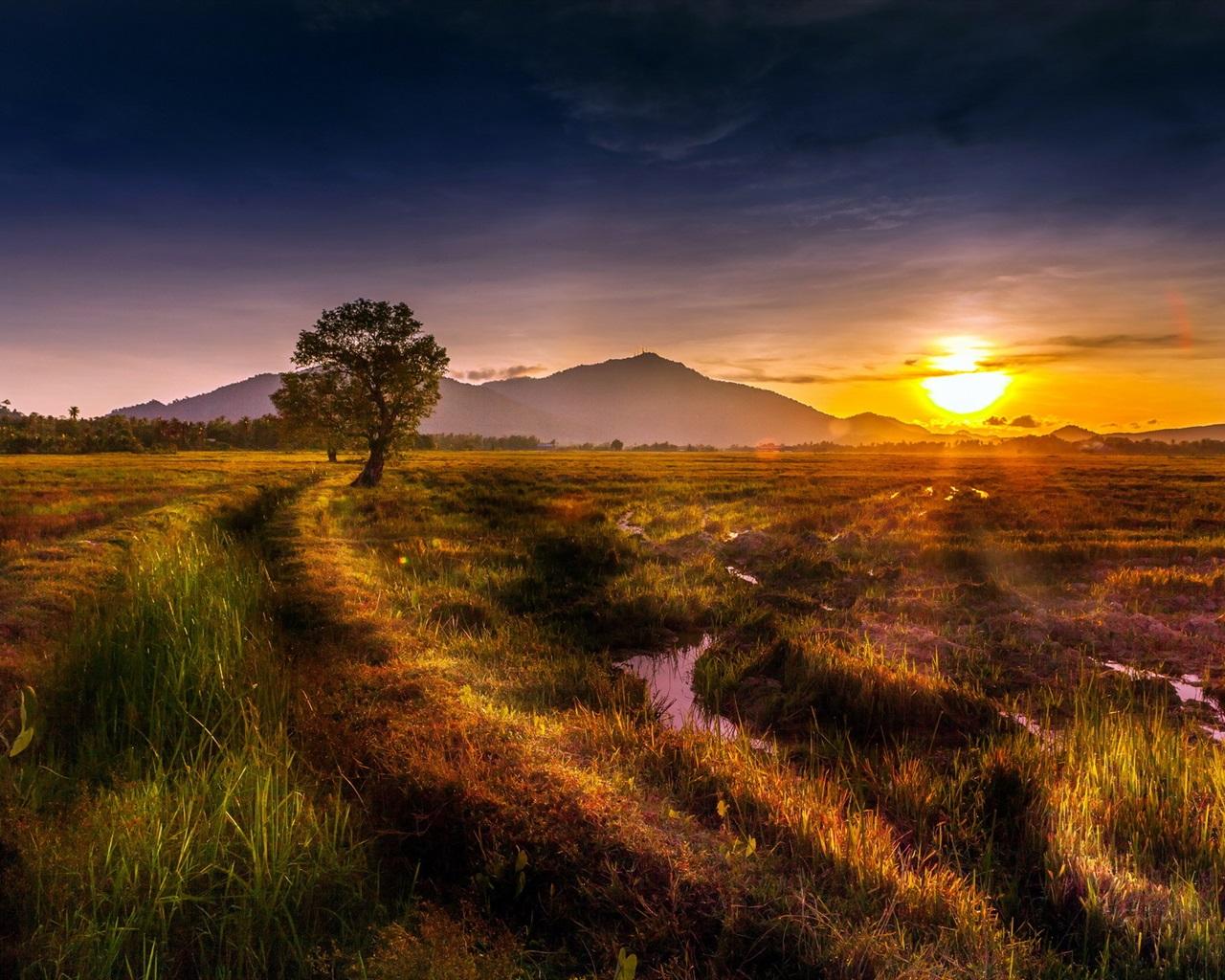 summer sunset landscape wallpaper - photo #11