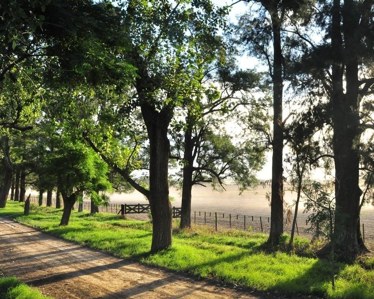 여름, 나무, 울타리, 도로, 강 배경 화면  1280x1024 배경 화면 ...