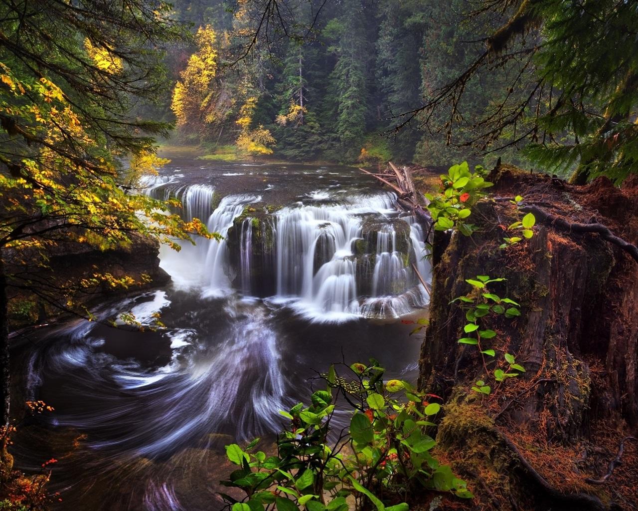 foto de Fonds d'écran États-Unis, Californie, Washington, rivière Lewis ...