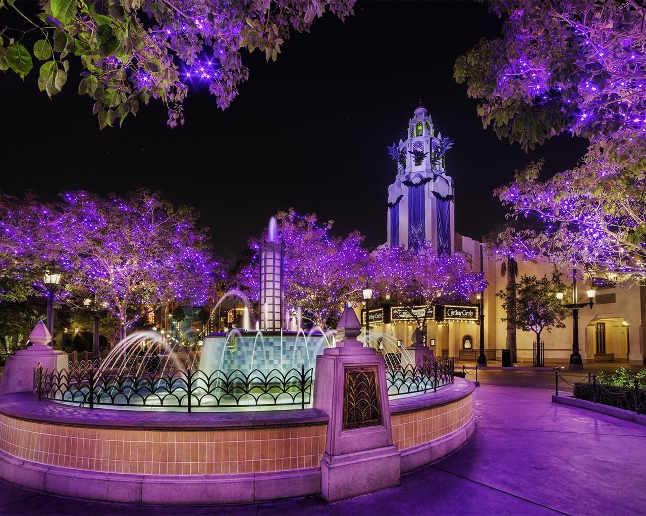 公园,夜晚,树木,灯光,喷泉 壁纸