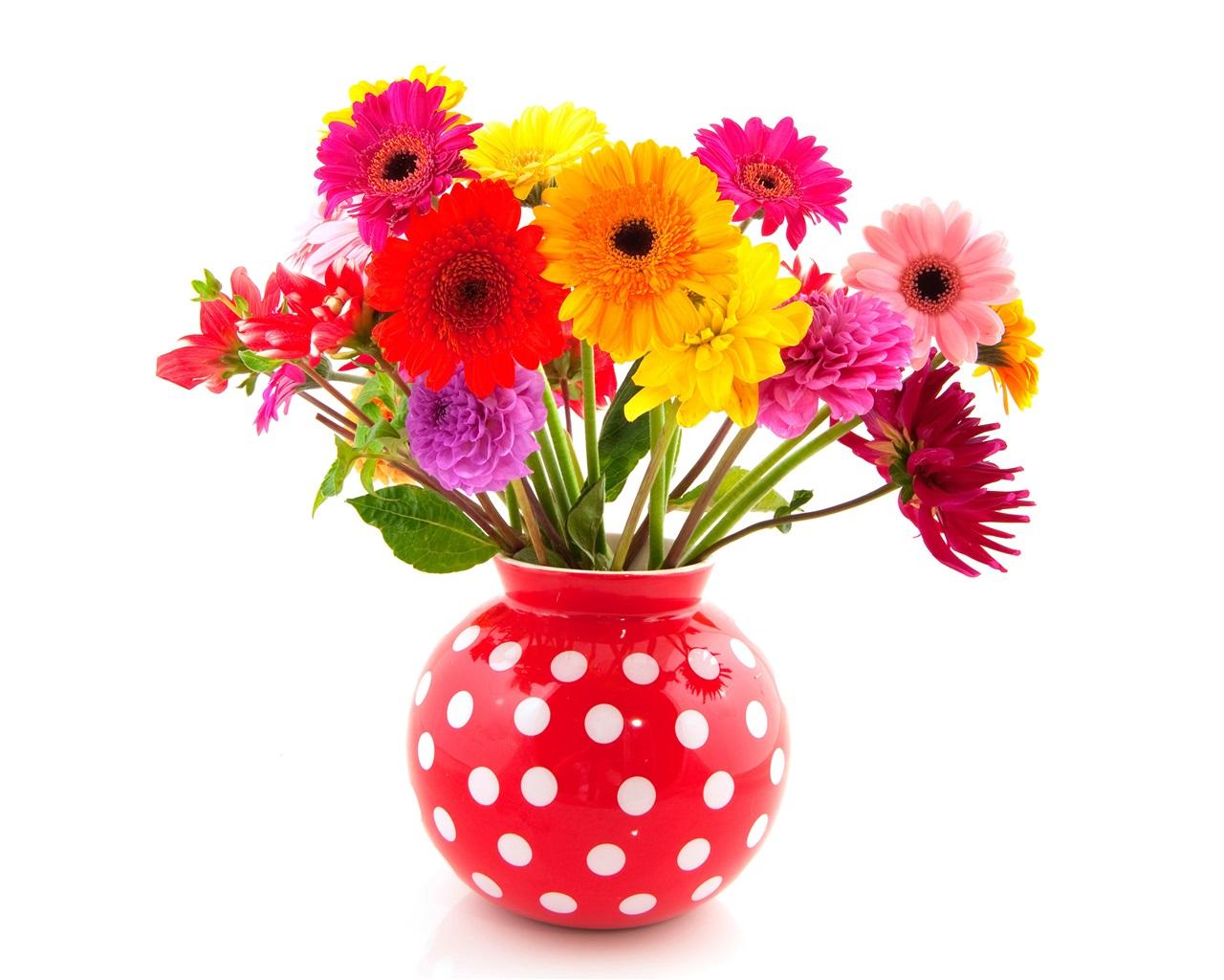 Download Wallpaper 1280x1024 Colorful Flowers, Gerbera And