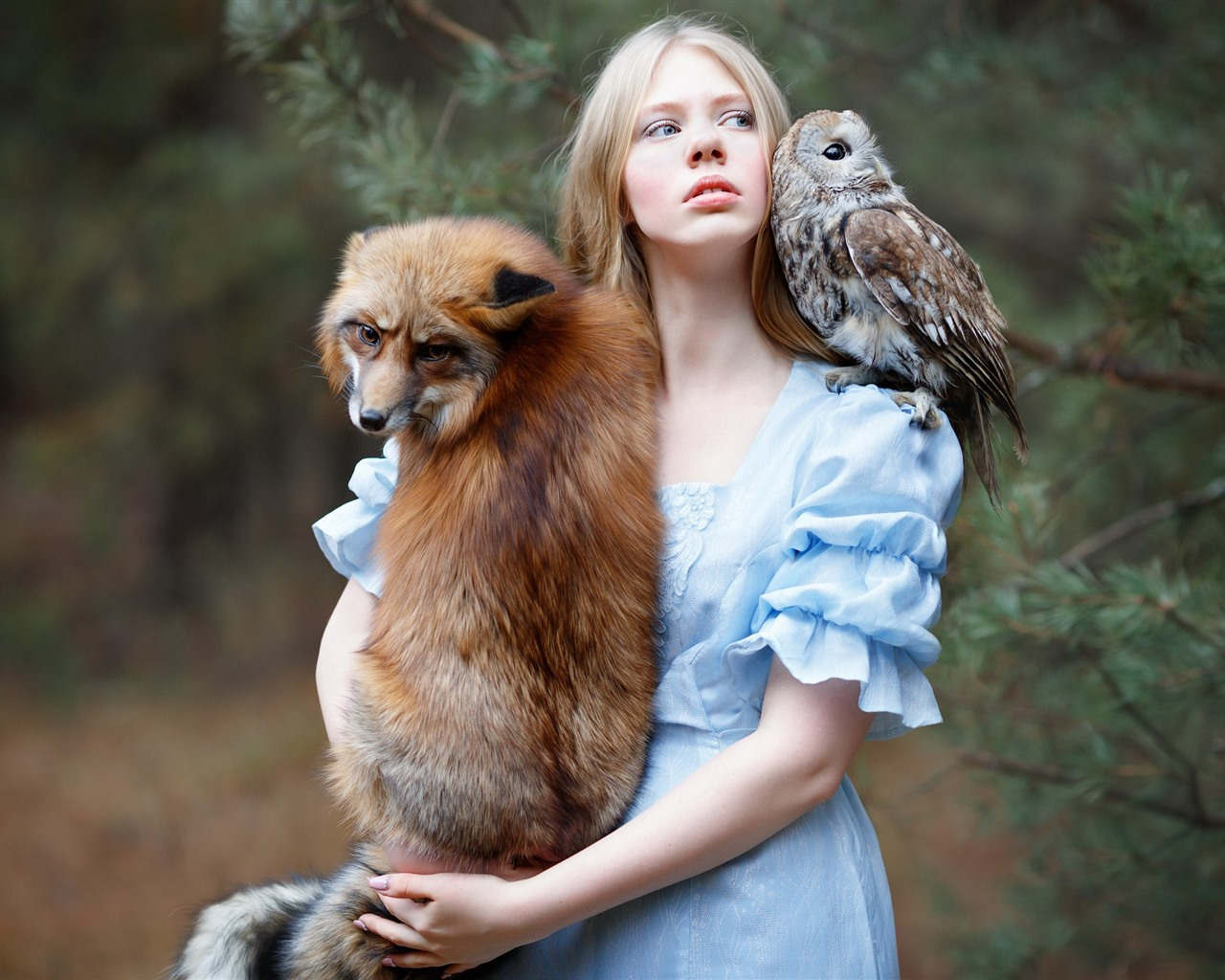 Girl And Fox Owl Friends 750x1334 Iphone 8 7 6 6s