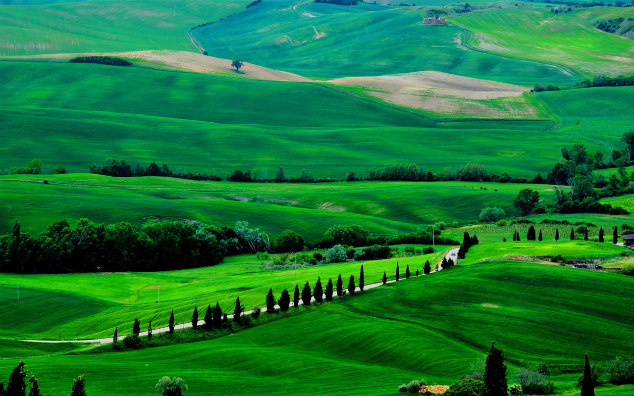 Wallpaper italy tuscany spring scenery fields road for Green italy