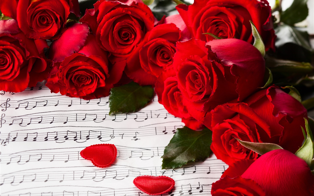flowers red roses valentine s day music wallpaper