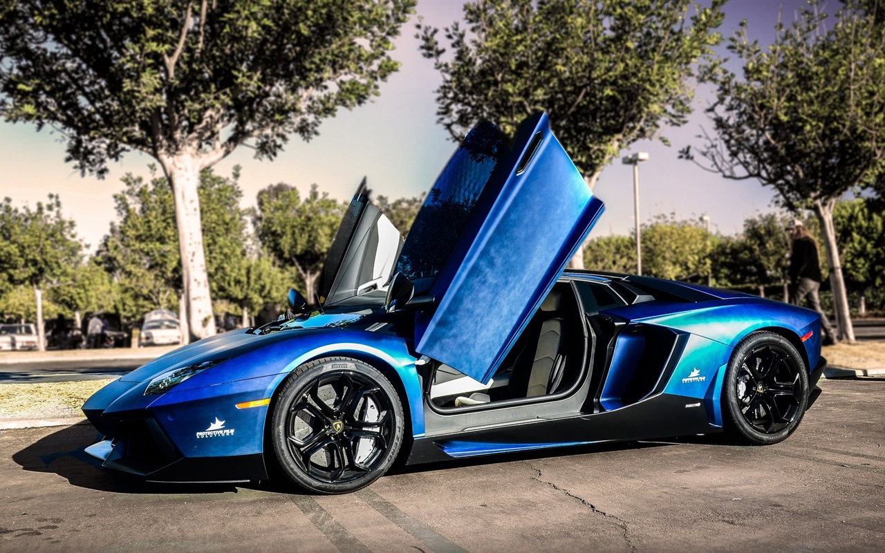 lamborghini aventador blau supersportwagen stra e b ume 1920x1080 full hd 2k hintergrundbilder. Black Bedroom Furniture Sets. Home Design Ideas