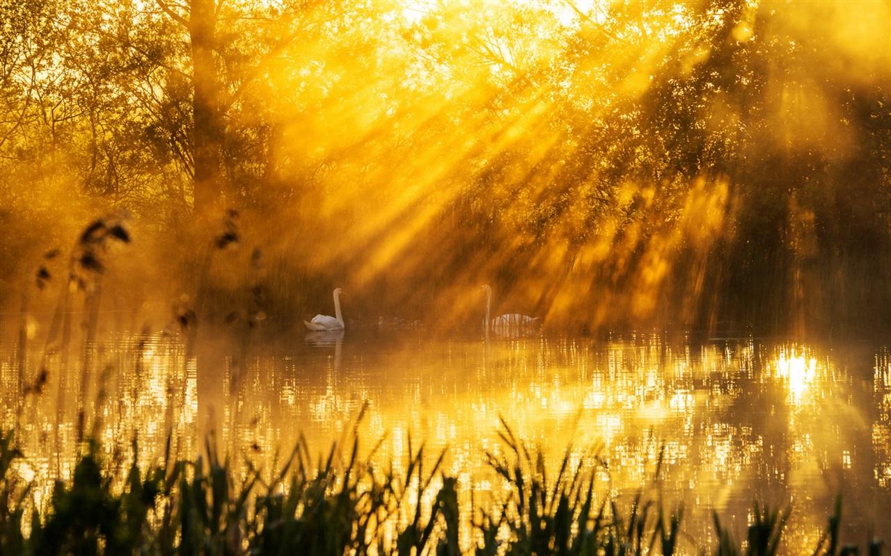 свою красивые картинки солнечного света конце поста