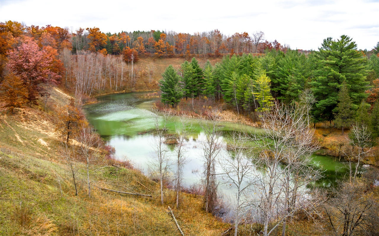Autumn river trees slope nature wallpaper 1280x800 - Wallpapers 1280x800 nature ...