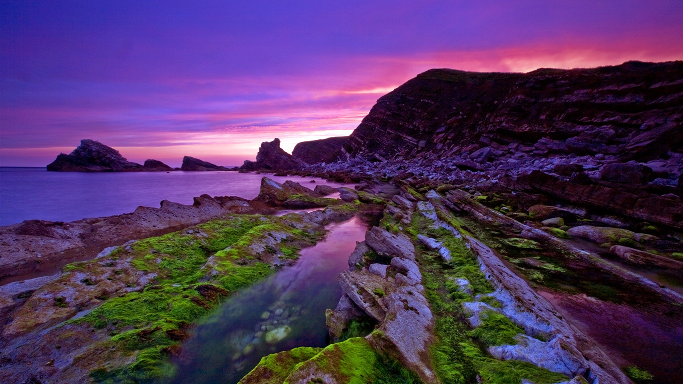 Wallpaper Beautiful Purple Sunset Coast 1920x1200 Hd Picture Image
