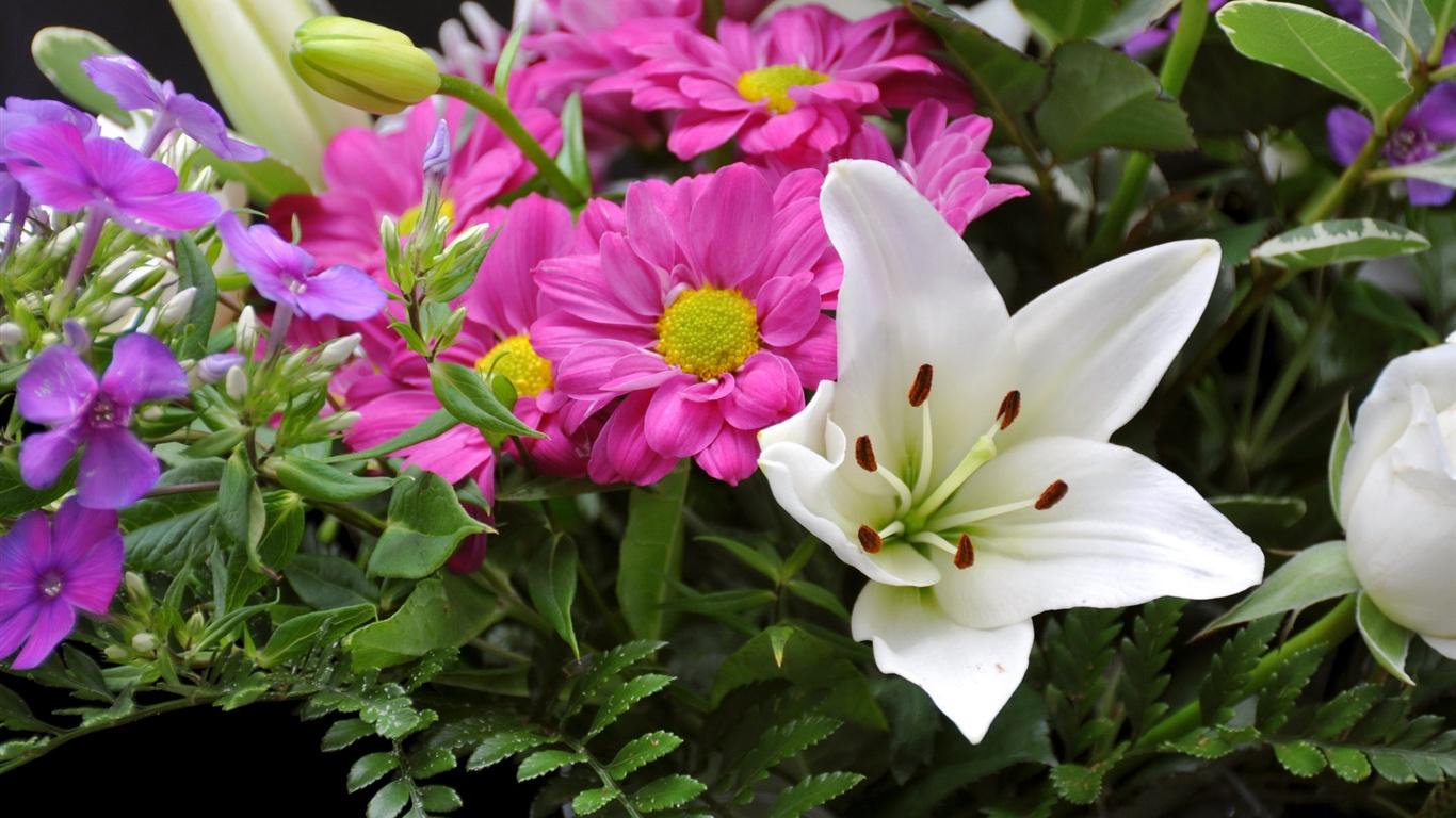 Красивые цветы крупным планом обои