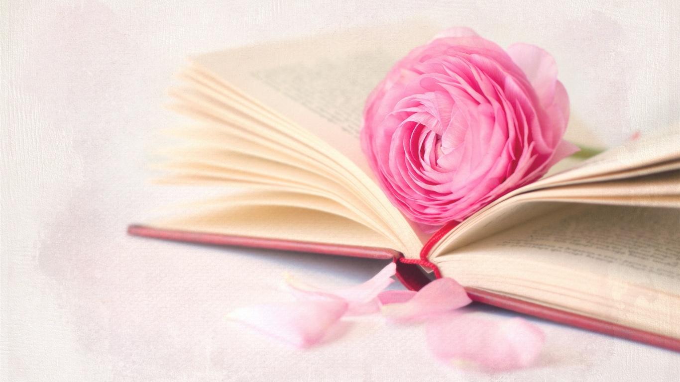 Book Cover Photography Lighting : Fleur rose avec un livre fonds d écran