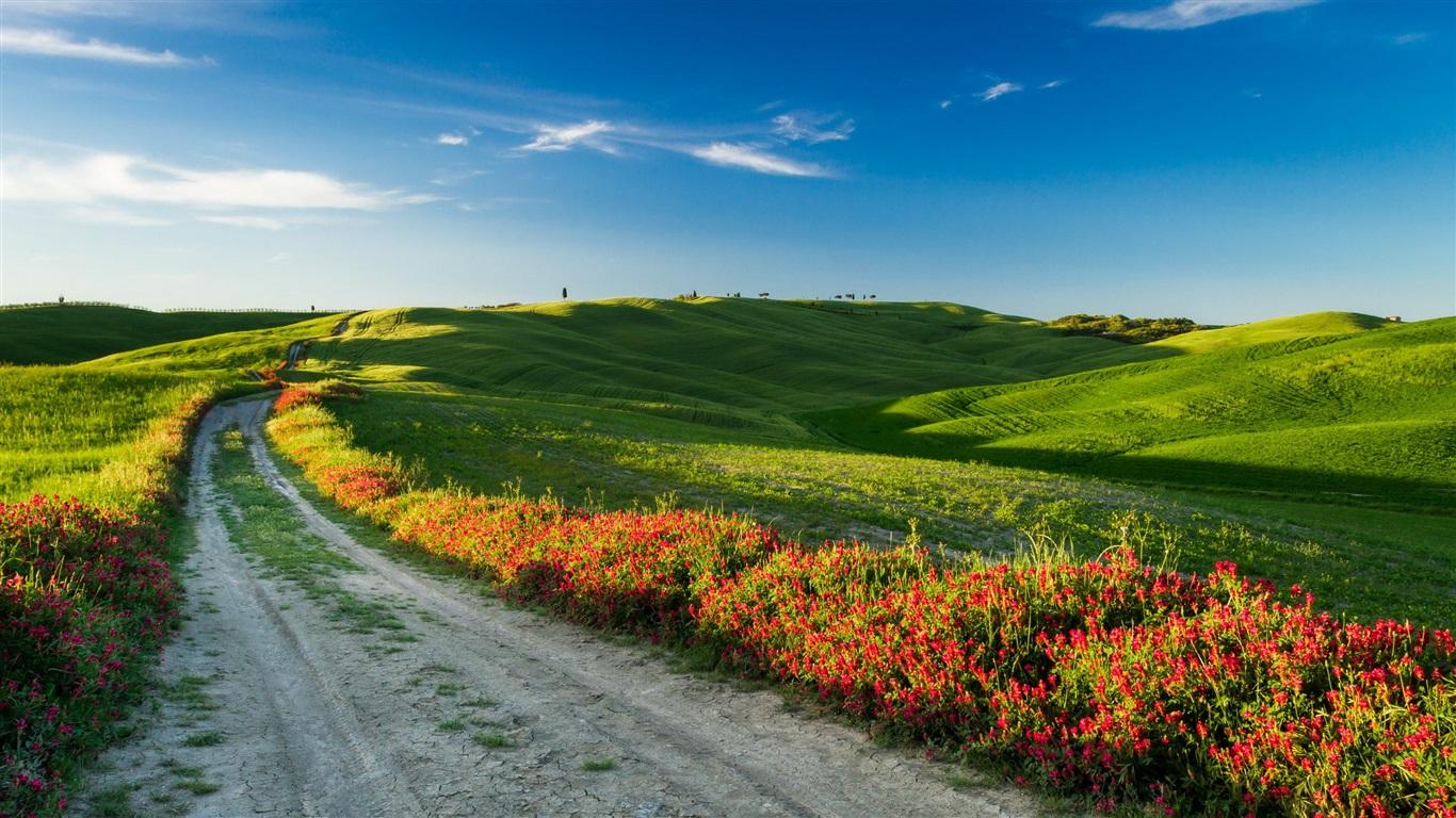 Toscana, Italia, Naturaleza, Paisaje, Campos, Carreteras