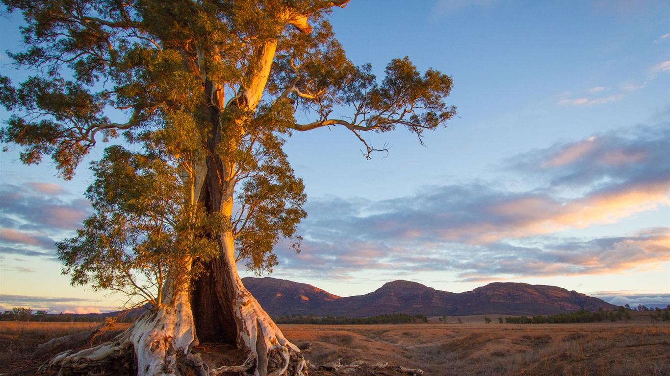 australia nature 1920x1440 hd - photo #15