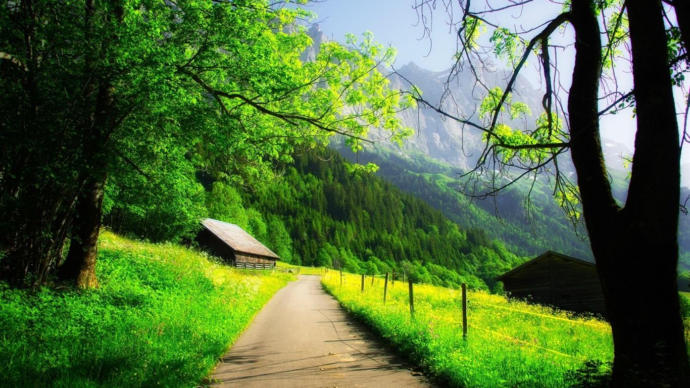 1366x768 green creative spring - photo #11