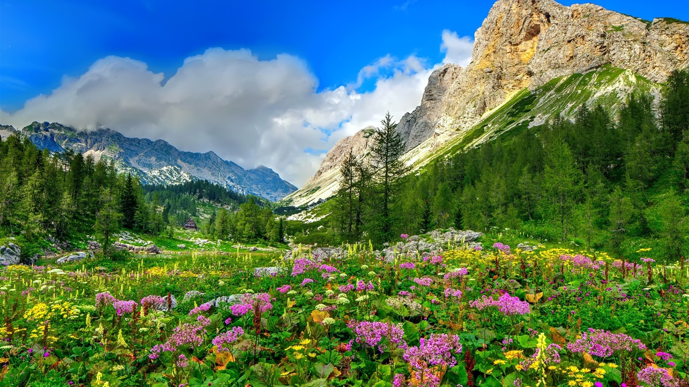 download wallpaper 1366x768 mountain trees flowers