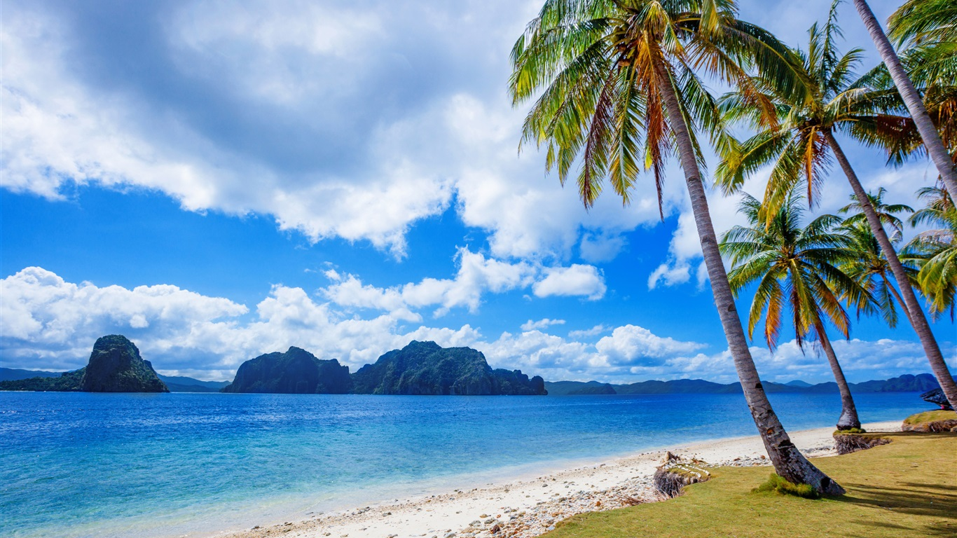 Wallpaper Philippines Tropics Palm Trees Sea 3840x2160 Uhd 4k