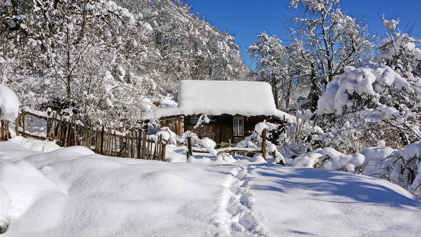 Fondos de pantalla invierno nieve espesa caba a rboles 1920x1200 hd imagen - Cabana invierno ...