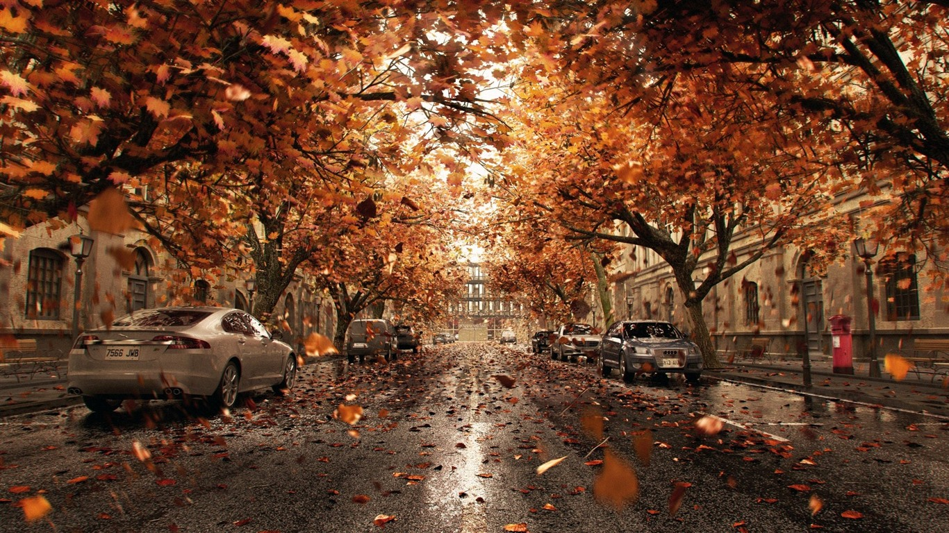 Wallpaper Cars, trees, road, city, leaves, autumn ...