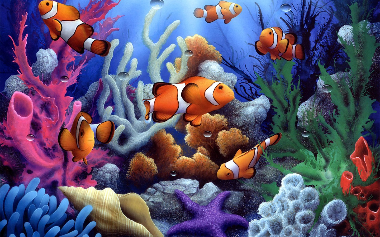 Subaqu&225tica Coral Coloridos E Peixes Pap&233is De Parede