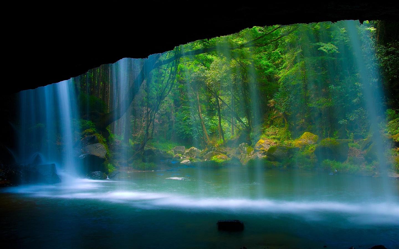 壁紙 美しい風景 滝 川 森 岩 2560x1600 Hd 無料のデスクトップの