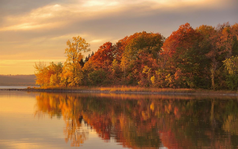 壁紙 夕暮れの秋、森、湖、水の反射 1920x1200 Hd 無料のデスクトップの背景 画像