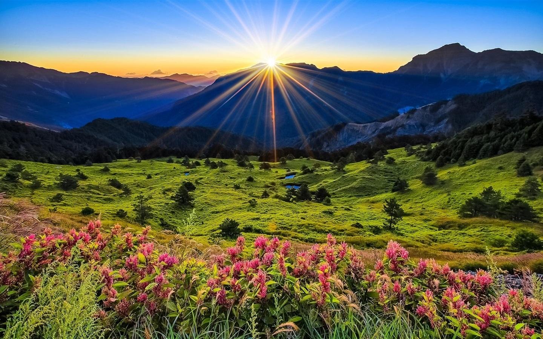 sunrise mountains flowers - photo #13