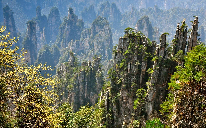 首页 自然和风景 张家界美丽的自然风光,岩石峭壁山,中国 壁纸  下载