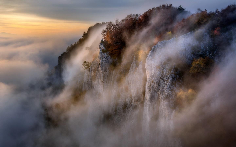 Обои туман, утро. Пейзажи foto 16