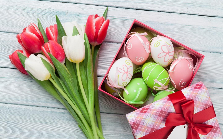 Fondos De Pantalla 1440x900 Tulipas Pascua Fondo De Color: Tulipanes Rojos Y Blancos, Huevos De Pascua, Regalo Fondos