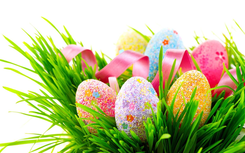 Fondos De Pantalla 1440x900 Tulipas Pascua Fondo De Color: Huevos Coloridos, Muchas Bolas Cubiertas, Hierba