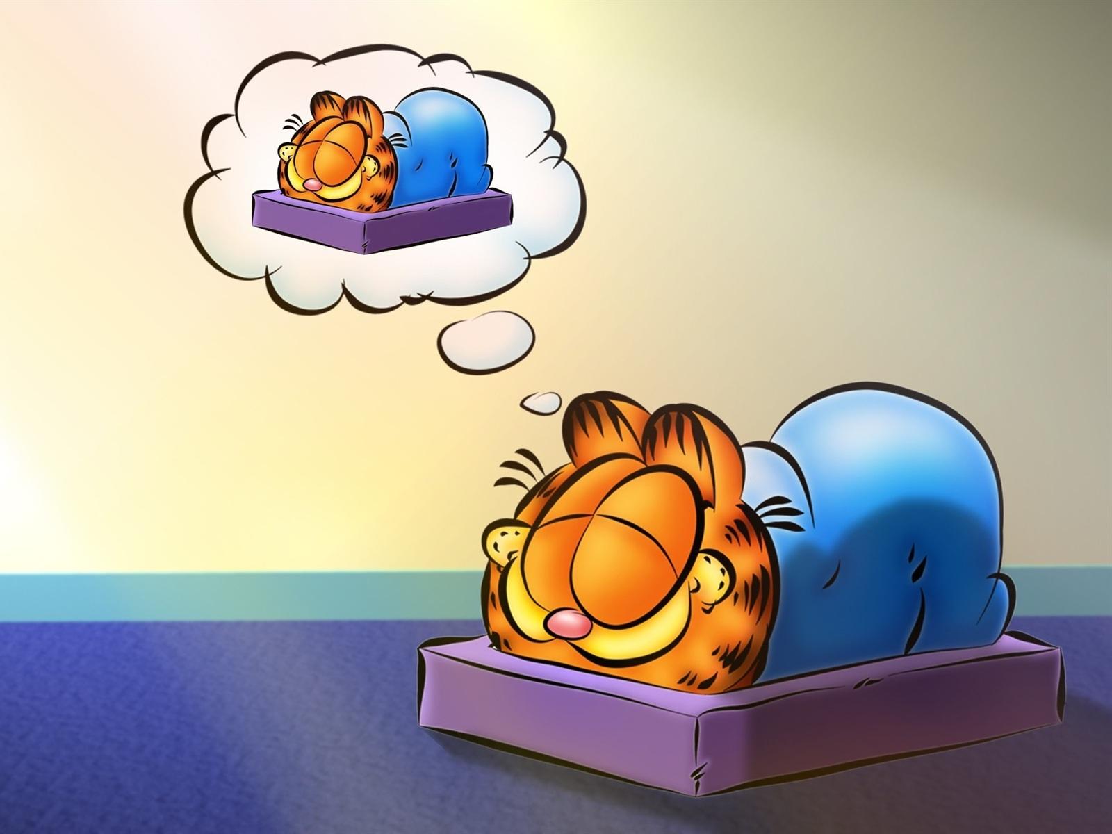 卡通明星加菲猫 壁纸图片