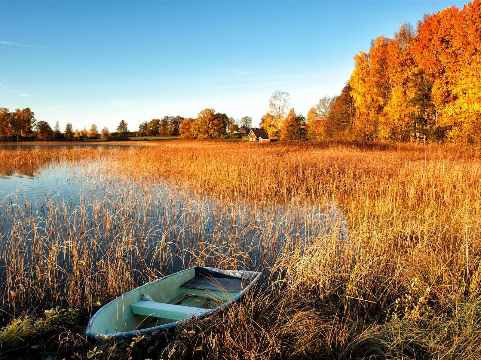 вода озеро осень water the lake autumn  № 1156060  скачать