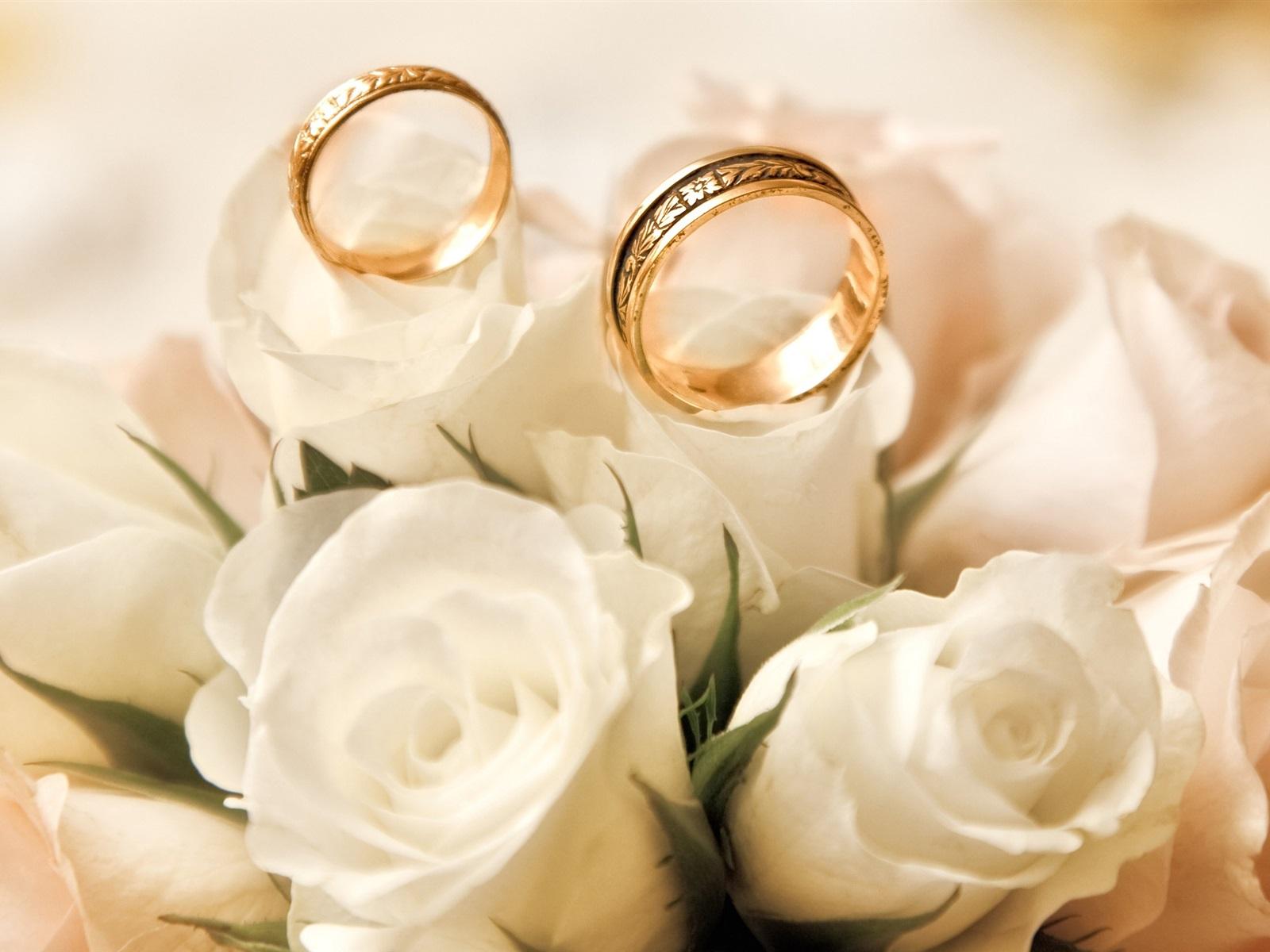 Картинки розы и обручальные кольца