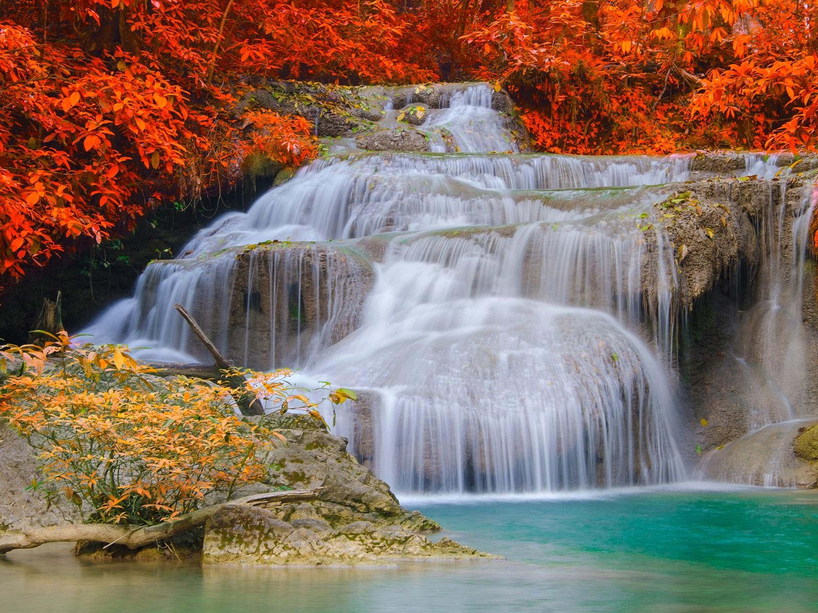 滝、秋、木、紅葉 壁紙 | 1600x1200 壁紙ダウンロード ...