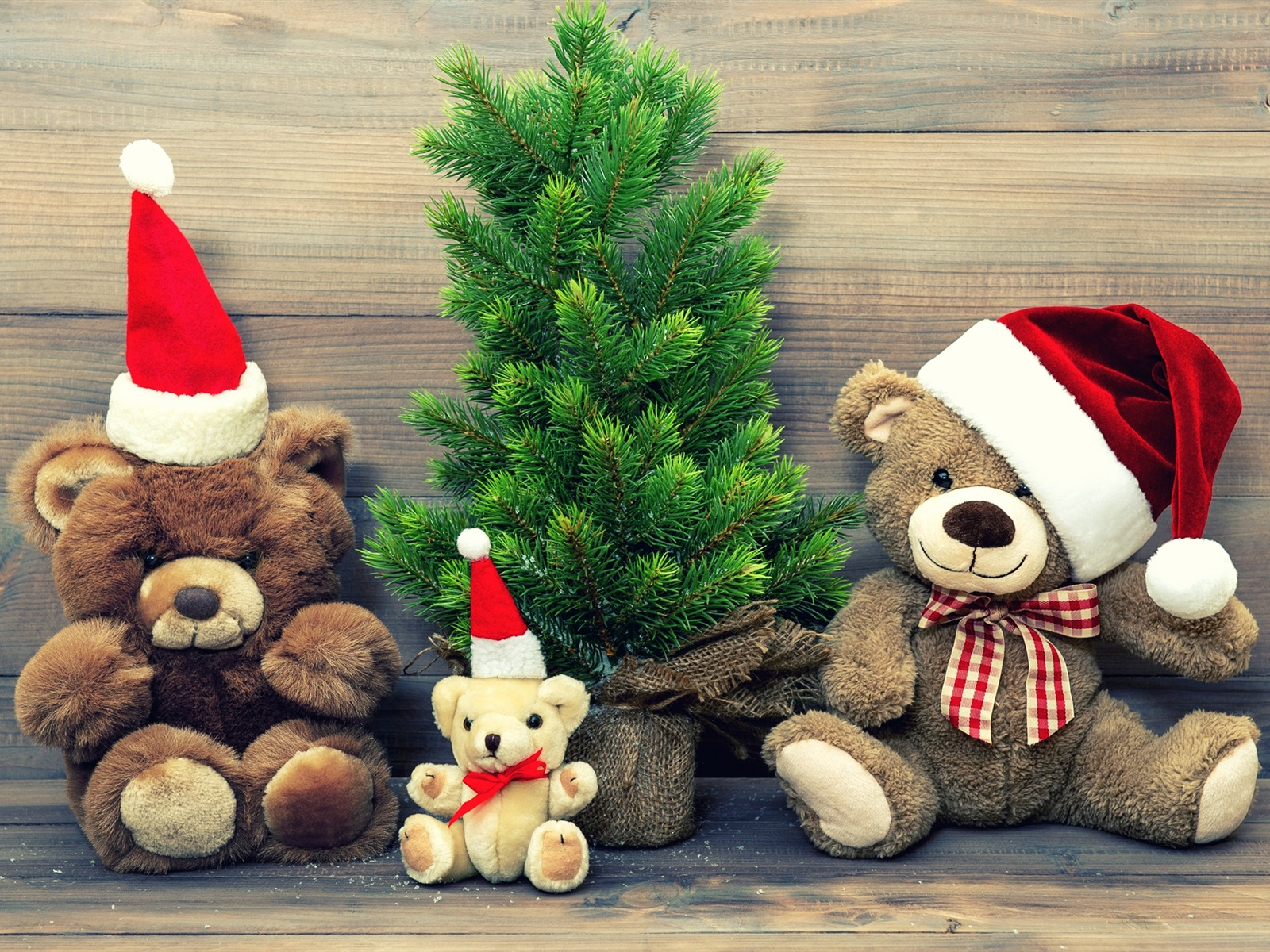 Christmas Teddy Bear Wallpaper: Merry Christmas, Hat, Decoration, Teddy Bear Wallpaper