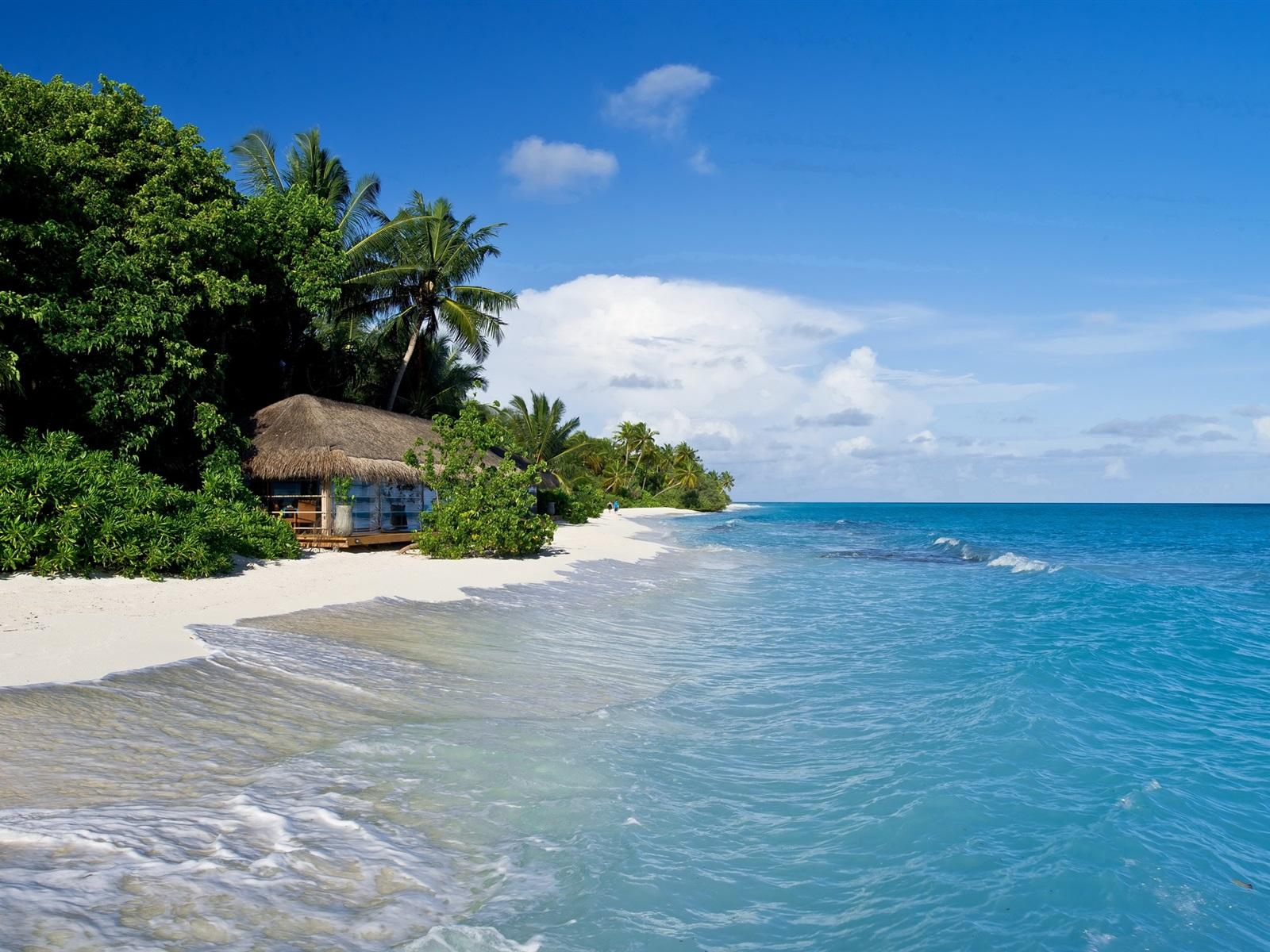 malediven tropisch meer strand -#main