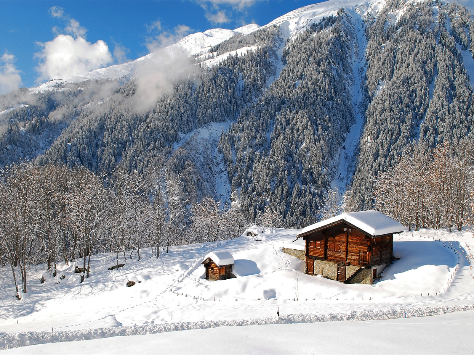 Wallpaper Winter, Forest, Landscape HD, Picture, Image